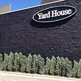 stain, lacquer, and dye album cover showing the yard house at park meadows mall